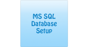 MS SQL Custom Setup