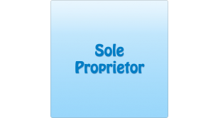 Sole Proprietor Monthly 1 GB